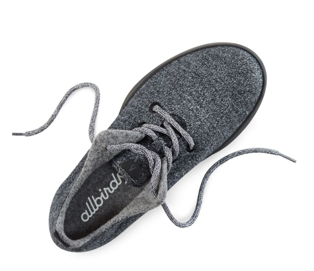 allbirds 1.jpg